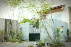 20160326_G1-whitegarden