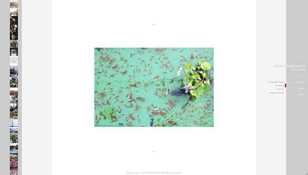 Noriko Nakamoto Photographer_small